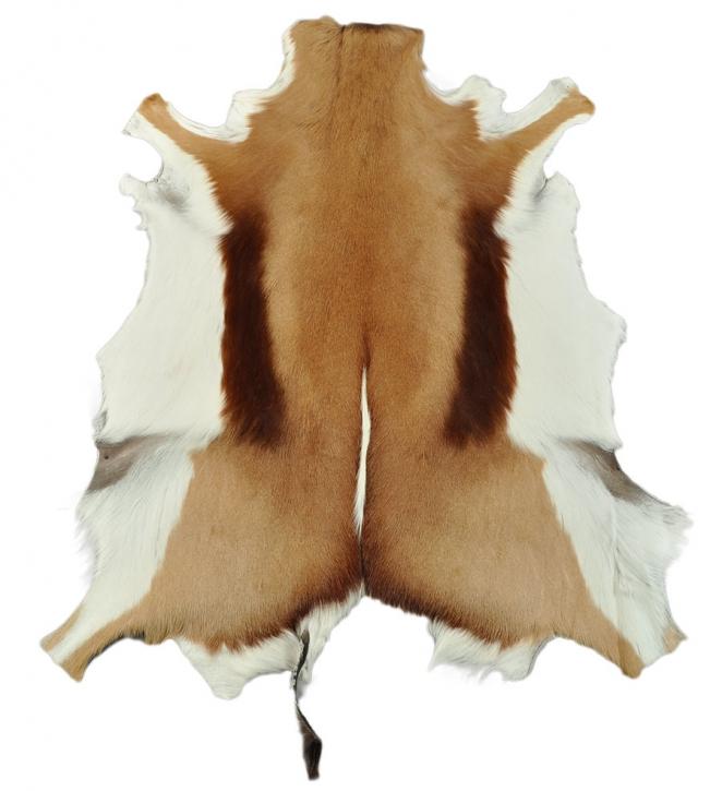 echtes Springbockfell Antilopenfell 80 x 60 cm