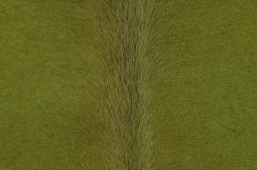 EXCLUSIVES KUHFELL GRUEN GEFAERBT 220 x 190 CM AUS SÜDAMERIKA